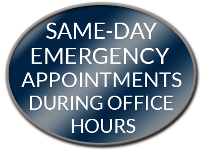 Same Day Emergency Appointments